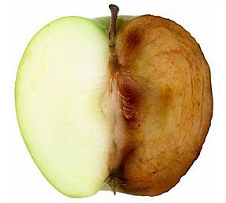 Image result for oxidized apple
